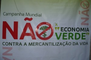 (No green economy, creative commons)