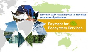 (Payments for Ecosystem Services green growth)