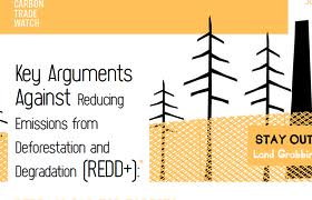 (Carbon Trade Watch Key arguments against REDD+)