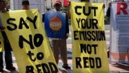 (Say no to REDD)