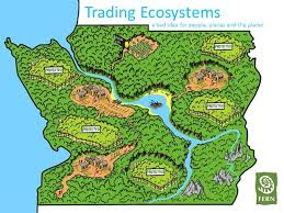 Trading ecosystems powerpoint presentation (FERN)